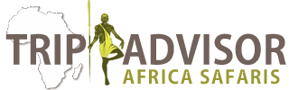 Trip Advisor Africa Safaris