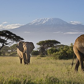 Weekend Get away to Amboseli